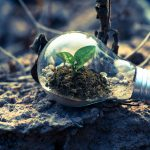 Economía circular: conceptos básicos